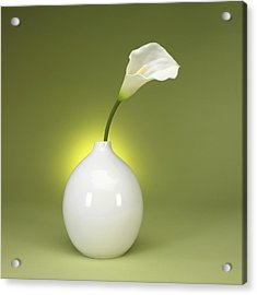 Calla Lily And Vase Acrylic Print by Tony Ramos