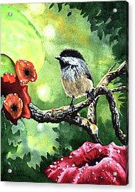 Canadian Chickadee Acrylic Print by Timithy L Gordon