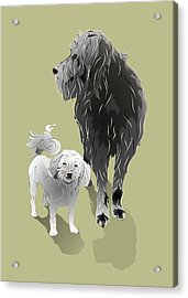 Canine Friendship Acrylic Print by MM Anderson