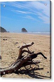 Cannon Beach Driftwood Acrylic Print by Lori Seaman