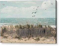 Cape Cod Beach Scene Acrylic Print by Juli Scalzi