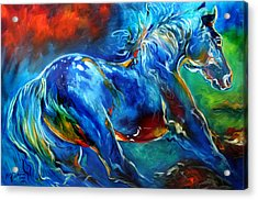 Captured Wild Stallion Acrylic Print by Marcia Baldwin
