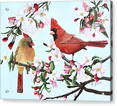 Cardinals And Apple Blossoms Acrylic Print by Johanna Lerwick