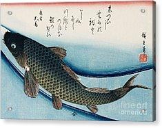 Carp Acrylic Print by Hiroshige
