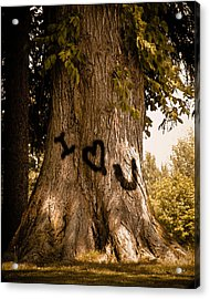 Carve I Love You In That Big White Oak Acrylic Print by Trish Tritz