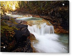 Cascade On Beauty Creek Acrylic Print by Larry Ricker