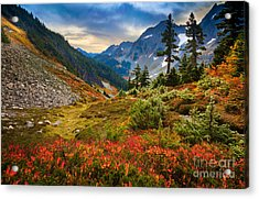 Cascade Pass Fall Acrylic Print by Inge Johnsson