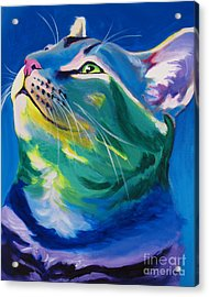 Cat - My Own Piece Of Sky Acrylic Print by Alicia VanNoy Call