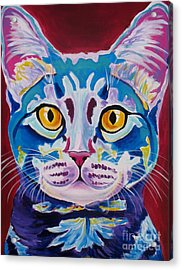 Cat - Mystery Reboot Acrylic Print by Alicia VanNoy Call