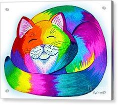 Cat Napping Acrylic Print by Nick Gustafson