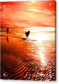 Catch Me If You Can Acrylic Print by Suni Roveto
