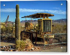 Caterpellar Acrylic Print by Stephen Campbell