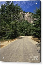 Cathedral Ledge State Park - Conway New Hampshire Usa Acrylic Print by Erin Paul Donovan
