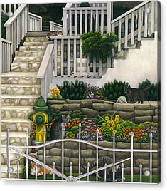 Cats Among Stairs And Garden  Acrylic Print by Carol Wilson