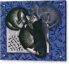 Cats And Crossword  Acrylic Print by Carol Wilson