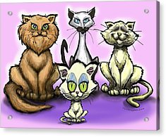 Cats Acrylic Print by Kevin Middleton
