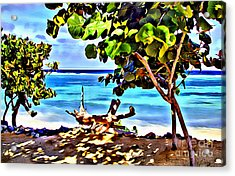 Cayman Cove Acrylic Print by Carey Chen