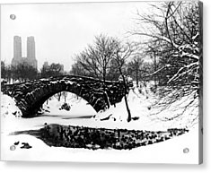 Central Park Duck Pond Acrylic Print by American School