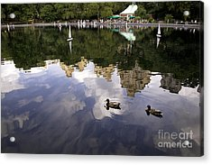 Central Park Pond With Two Ducks Acrylic Print by Madeline Ellis