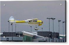Cessna 195b Businessliner Acrylic Print by Guy Whiteley