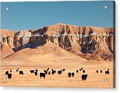 Chalk Cliffs Acrylic Print by Todd Klassy