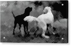 Challenger Acrylic Print by Tom Dickson