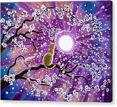Champagne Tabby Cat In Cherry Blossoms Acrylic Print by Laura Iverson
