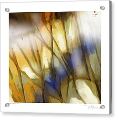 Change Of The Seasons Acrylic Print by Bob Salo