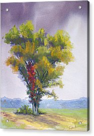 Changing Weather Changing Tree Acrylic Print by Christine Camp