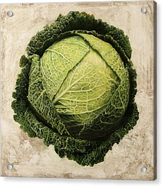 Checcavolo Acrylic Print by Danka Weitzen