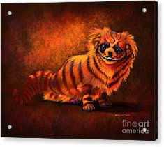 Cheshire Canine Acrylic Print by Stanley Morrison