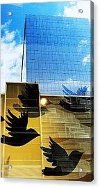 Chicago Birds Acrylic Print by Todd Sherlock