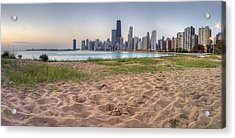 Chicago Skyline From North Beach Acrylic Print by Twenty Two North Photography