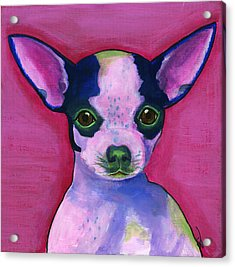 Chico Acrylic Print by Debbie Brown