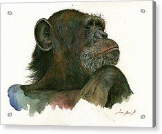 Chimp Portrait Acrylic Print by Juan Bosco