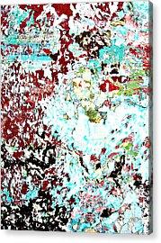 Chipped Wall 1 Acrylic Print by Derek Selander