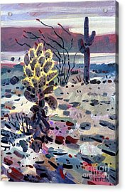 Cholla Saguargo And Ocotillo Acrylic Print by Donald Maier