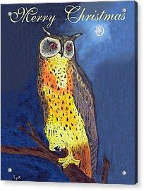 Christmas Owl Acrylic Print by Eric Kempson