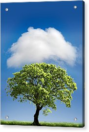 Cloud Cover Acrylic Print by Mal Bray