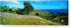 Co Galway, Connemara, Lough Corrib Acrylic Print by The Irish Image Collection