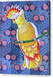 Cockatoo Acrylic Print by Jane Tattersfield