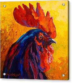 Cocky - Rooster Acrylic Print by Marion Rose
