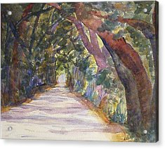 Coffin Point Road Acrylic Print by Stella Schaefer