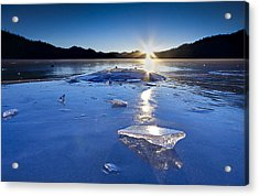 Cold As Ice Acrylic Print by Evan Spellman