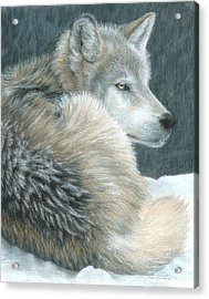 Cold Evening Acrylic Print by Carla Kurt