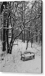 Cold Seat Acrylic Print by Lauri Novak