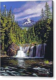 Cold Water Falls Acrylic Print by David Lloyd Glover