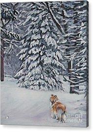 Collie Sable Christmas Tree Acrylic Print by Lee Ann Shepard