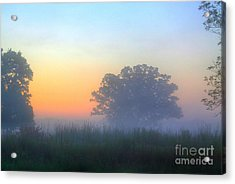 Color And Fog Acrylic Print by Robert Pearson