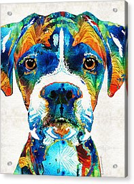 Colorful Boxer Dog Art By Sharon Cummings  Acrylic Print by Sharon Cummings